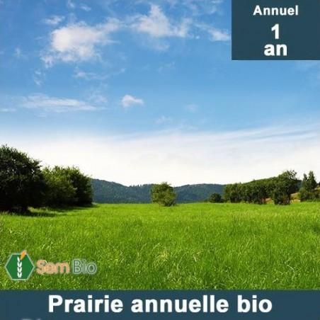 Mélange Prairie Annuelle bio
