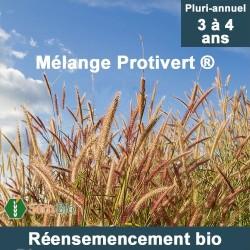Mélange de RÉENSEMENCEMENT bio - Sols Secs et Normaux