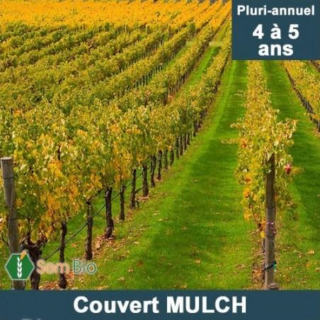 MÉLANGE TAILLE COURTE «COUVERT MULCH» PLURI-ANNUEL – BIO*