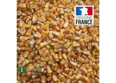 MAÏS en Grain C2 UAB - Produit en France